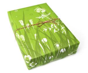 Suse Kaluza Design Geschenkpapier Sommerblumenwiese web