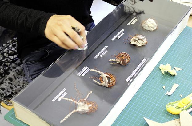 suse kaluza design kunstprojekt metamorphose7